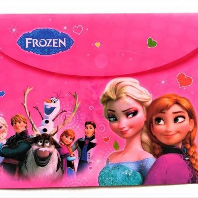 Trendilook Frozen Theme Document Folders Set of 12 for Girls Birthday Return Gifts